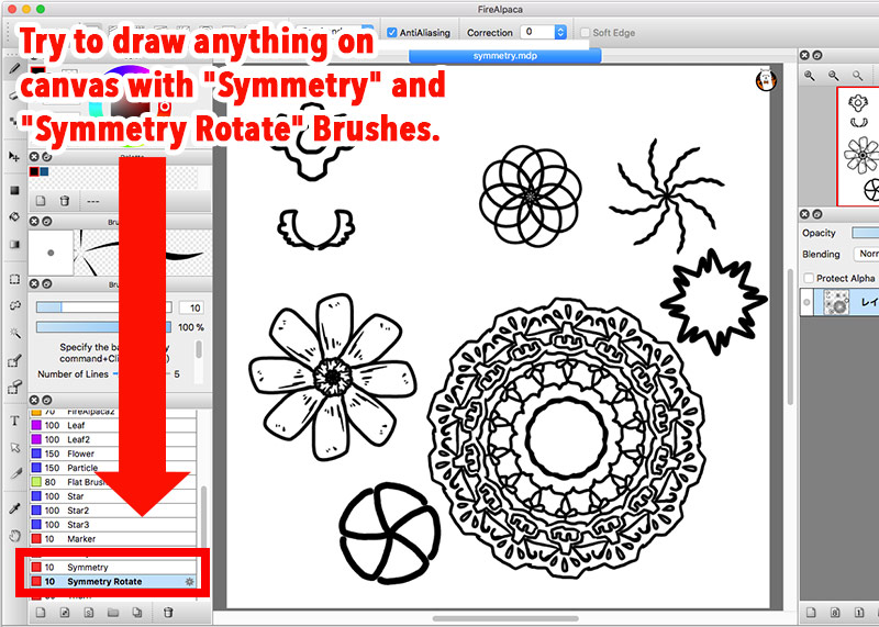 Diagram:Lines created by Symmetry and Symmetry Rotate Brushes