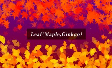 Brush : Leaf(Maple), Leaf(Ginkgo)