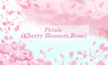 Brush : Petals (Cherry Blossom), Petals (Rose)